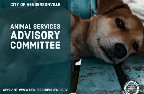 Animal Services Committee Flyer