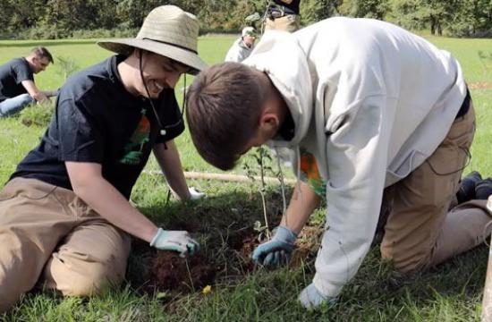 2 men planting a tree