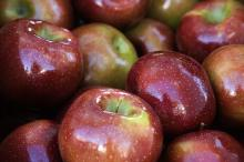 Apples Closeup