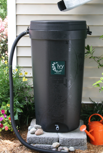 Photo of Ivy Rain Barrel in Residential Use